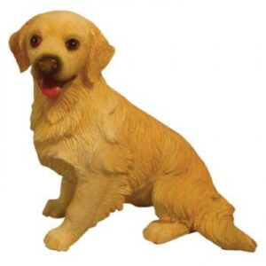 Sitting Golden Retriever DA002 Dog