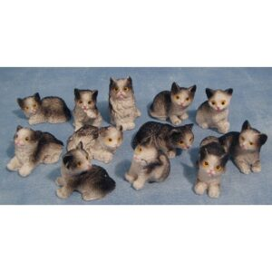 8177E CAT CATTS ASSORTED
