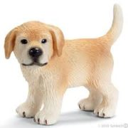 Golden Retriever Puppy Dog 163966