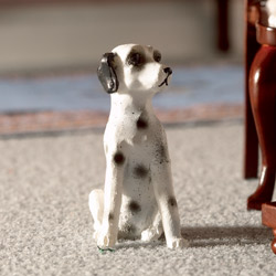 Dotty the Dalmatian Dog